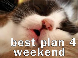 funny-cat-meme-my-plans-4-the-weekend