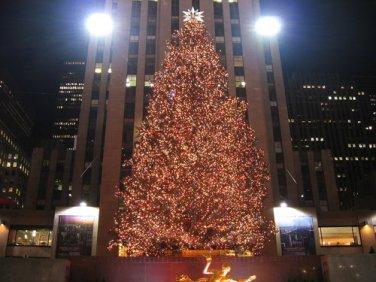 christmas-tree-rockefeller-center